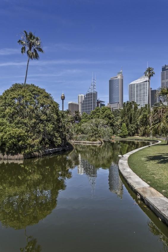 kurs językowy w Sydney